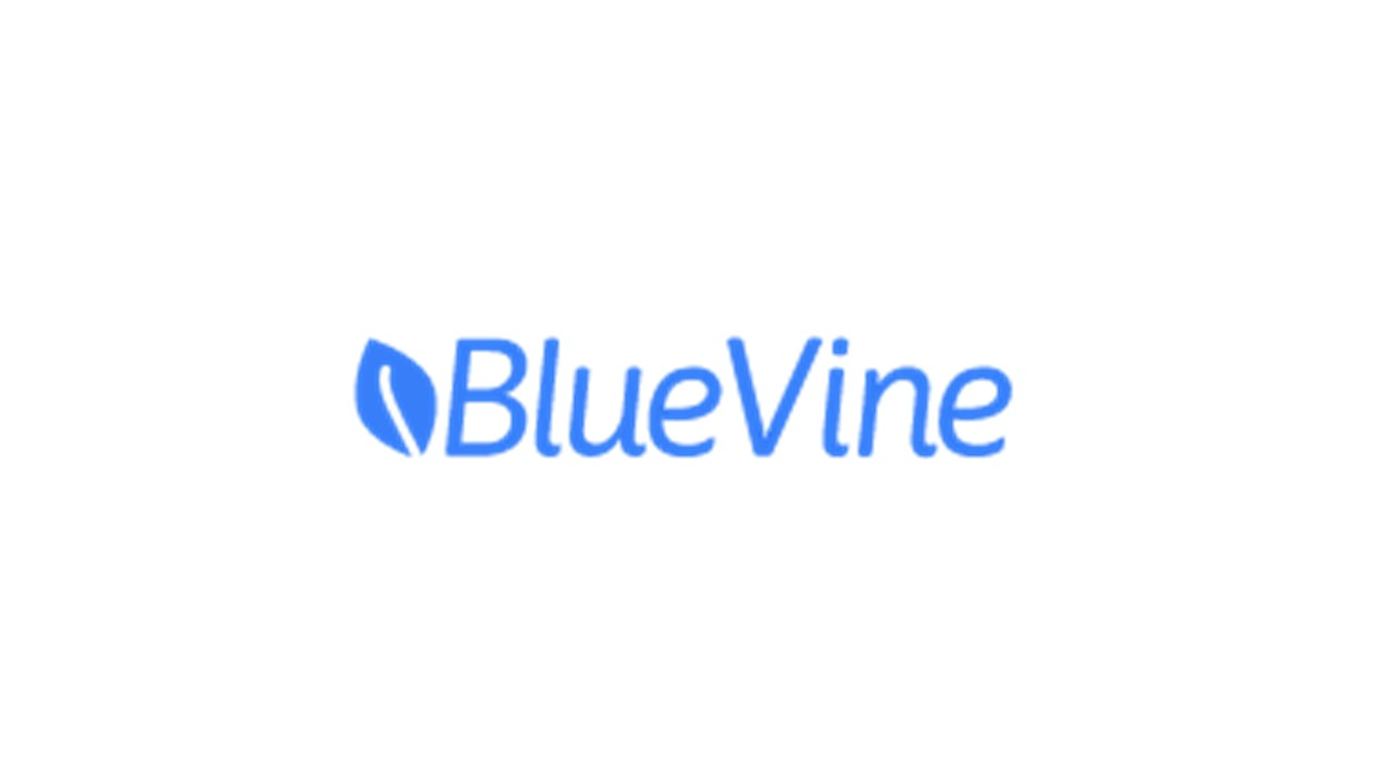 MUFG Innovation Partners invested in Bluevine Capital Inc.